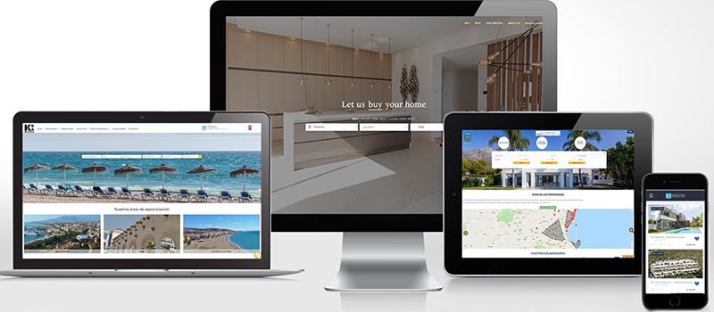 Professional Real Estate websites