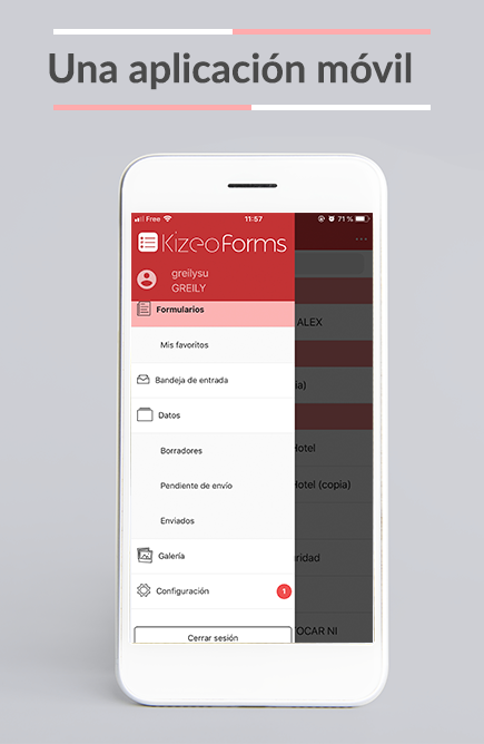 La App Kizeo Forms está diseñada para la recogida de datos en terreno desde un móviles y tablets. ¡Levante fácilmente la información!
